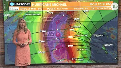 Hurricane Michael heads for landfall on US Gulf Coast with 115-mph winds - TrendingTODAYvideos