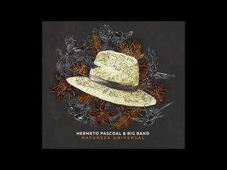 Apresentação - Hermeto Pascoal & Big Band