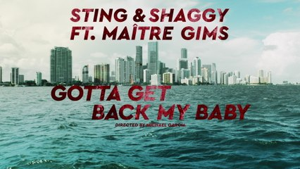 Sting - Gotta Get Back My Baby