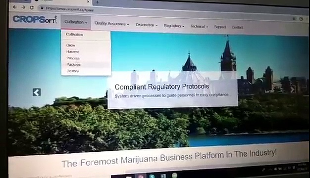 Cannabis Regulations For licensed producers | Cannabis For Medical Purposes