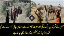 Water equal to gold in Thar desert, water tanks below land are locked intentionally