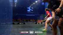 Squash Philadelphia 3 Up