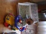 bébé en trotteur 1