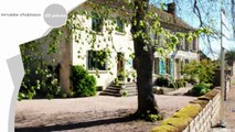 A vendre - Chambres d hotes ou gite - SAONE-ET-LOIRE  BOURGOGNE (71490) - 25 pièces - 742m²