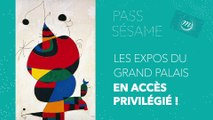 Sésame : le pass-expo du Grand Palais
