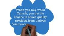 buy weed Canada