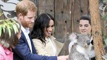 Australie: Harry et Meghan rencontrent des koalas