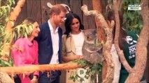"""Meghan Markle enceinte : le prince Harry et la duchesse """"prêts et excités"""""""