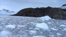 Climate Diaries: Antarctica ice melting at an ever quicker rate