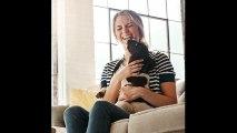 La saliva de los perros y de los gatos puede ser peligrosa para la salud