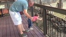 Quand ta fille ne veut pas partir du Zoo... Tellement drôle!