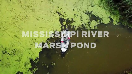 Fishing the Louisiana Marsh -- An Osprey's-Eve View