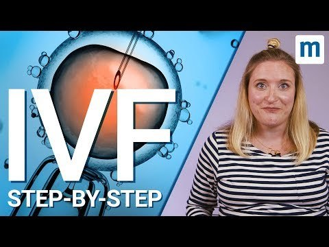 IVF treatment: Step-by-step