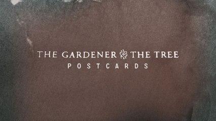 The Gardener & The Tree - Postcards
