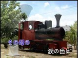 【HD】日本演歌熱唱(5)_福寿草(福壽草)_(人聲)MV