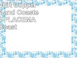 Reversible Glitter SPARKLESILVER Copper PLACEMATS and Coasters 8PC Set  4 PLACEMATS 4