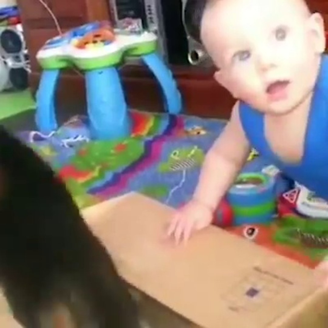 Friendship example of little pets  between cute baby