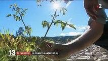 Lacs et rivières à sec : la France manque d'eau