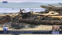Dans le Var, 37 plages sont désormais polluées par des boulettes de pétrole (et fermées au public)