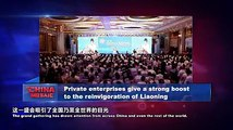 Private enterprises give a strong boost to the reinvigoration of Liaoning. #VideofromChina #ChinaMosaic