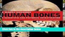 F.R.E.E [D.O.W.N.L.O.A.D] Human Bones: A Scientific and Pictorial Investigation [E.B.O.O.K]
