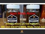 BELI MADU HUTAN GRATIS DRINKING JAR, WA   +62 838-0731-8473, Madu Asli