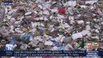 Cotons-tiges, pailles, couverts... Les eurodéputés votent l'interdiction des plastiques à usage unique