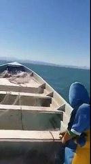 Cae Helicóptero De La Marina en el mar, Pescadores los rescatan