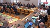 Budget du ministère des sports : l'audition de roxana maracineanu   - Les matins du Sénat (25/10/2018)