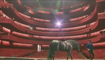 Centaures, quand nous étions enfants au théâtre national de Nice