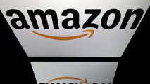 Both Amazon and Alphabet Remain Attractive Says Neuberger Berman's Flax