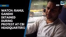 Watch: Rahul Gandhi detained during protest at CBI headquarters