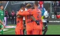 Angers vs Lyon 1-2 All Goals & Highlights 27/10/2018
