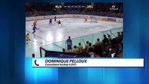 Hautes-Alpes: Les Rapaces redéploient leurs ailes après leur victoire face à Angers: l'analyse de Dominique Pelloux