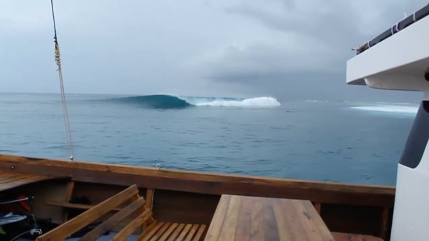 D'Bora Surf Charters | Mentawai's | Indonesia | Wave of the Day Surf Travel