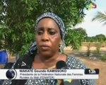 ORTM/Journée internationale de la femme rurale plusieurs groupement de femme ont reçu de la part du President de la République des dons de matériaux agricoles