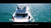 A Fleet of Leopards Cruising the Bahamas
