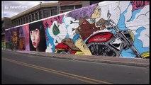 Graffiti artists brighten up industrial zone in Bogota with colourful murals