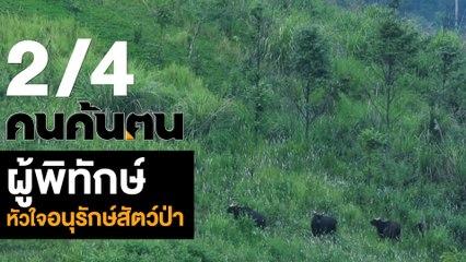 คนค้นฅน : ผู้พิทักษ์หัวใจอนุรักษ์สัตว์ป่า ช่วงที่ 2/4 (19 ต.ค.61)