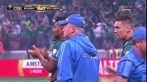 Boca Juniors 2 - 2  Palmeiras Highlights all goals Oct 31, 2018