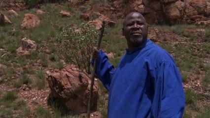 Sipho Makhabane - Siyabonga Nkosi Jesu