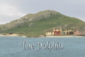 The Island of Inis Cool - #19. The Dolphin