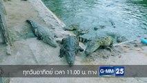 ไทยทึ่ง WOW! THAILAND อาทิตย์ที่ 4 พ.ย. นี้ 11.00 น. ทางช่อง GMM25