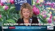 Dupin Quotidien : Slow flower, les fleurs locales de saison - 02/11