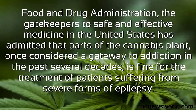 DEA Hemp CBD Oil For Epilepsy
