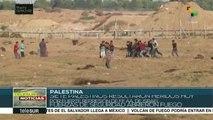Represión israelí deja al menos siete palestinos heridos en Gaza