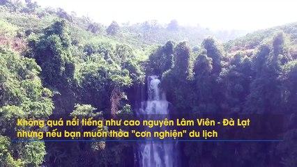 """Lang thang tìm đến Cao nguyên Di Linh đẹp mơ mộng trong list danh sách điểm """"sống ảo siêu hot"""""""