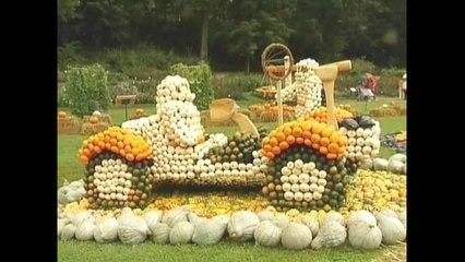 Germans Make A Pumpkin Car