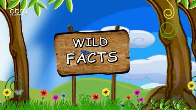 wild facts about snakes