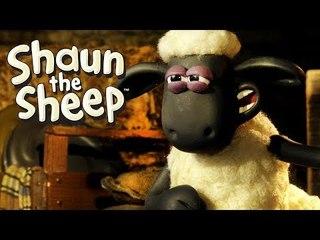 Film Night - Shaun the Sheep